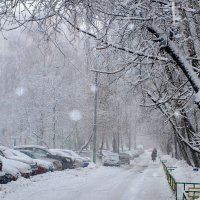 Зимний двор :: анна нестерова
