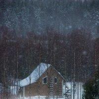 ...жила зима в избушке :: Ирэна Мазакина