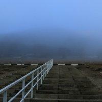 в туман :: Игорь Kуленко