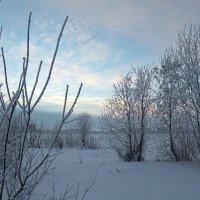 Северодвинск. У зимнего озера :: Владимир Шибинский