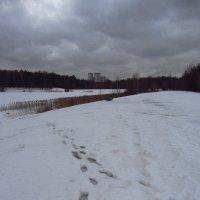 Как я оставил свой след в фотографии - IMG_0382 :: Андрей Лукьянов