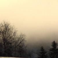 Туман :: Людмила Шнайдер