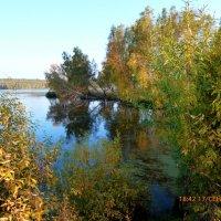 На стыке лета и осени :: оксана