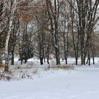 В вальсе кружАтся снежинки зимой ... :: Валентина ツ ღ✿ღ