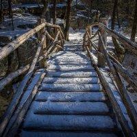 Мостик в лесу. :: Slava Sh