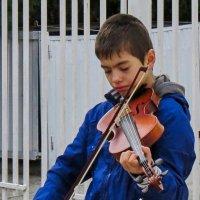 Музыка на улице :: Валерий Дворников