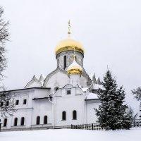 Савво Сторожевский монастырь на Рождество. :: яков боков