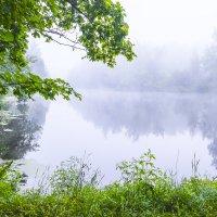 Утро над озером. :: яков боков