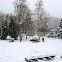 Скверик в снегопад :: Natali