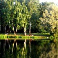в парке лето :: Елена Семигина