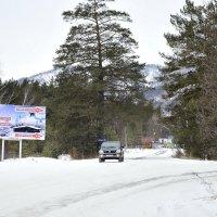 Прогулка в январе :: galina tihonova