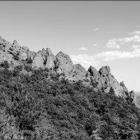 гора Дракон :: Sergey Bagach