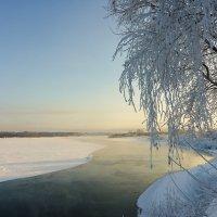 Над зимней рекой :: Валентин Котляров