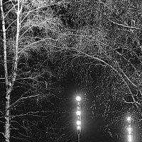 Зимний вечер :: Татьяна Маркова (tvm00/Татьяна)