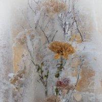 Цветы во льду :: Виктория Переплетенко