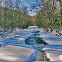 Зима в тайге :: Жанетта Буланкина
