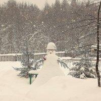 Снегопад. :: Галина .