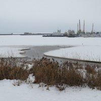 Волга. Зима в порту. Чебоксары :: Ната Волга