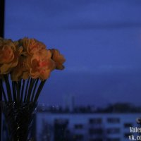 Рижское небо :: Valentina Zaytseva