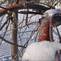 Морозным днём под снежным одеялом... :: Нина Корешкова