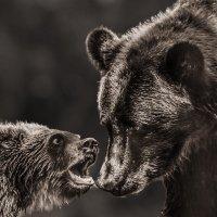 Не спорь с мамой.... :: Nn semonov_nn