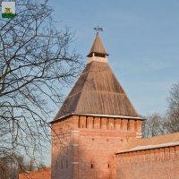Смоленская крепость. Копытенская башня :: Алексей Шаповалов Стерх