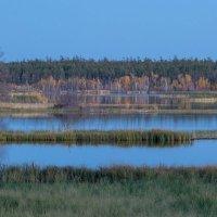 Вид на озеро :: Михаил Потапов