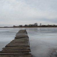 Зимнее озеро :: Елена Милая