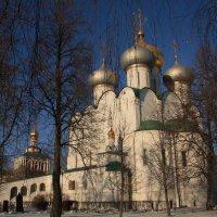 Купола. Москва. Новодевичий монастырь. :: Надежда Баликова