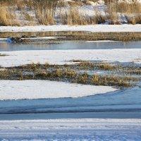 Зимний пруд :: Aнна Зарубина