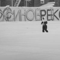 И в снег будем заниматься :: Елена Ермакова