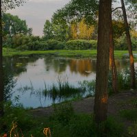 Всяк кулик свое болото хвалит. :: Kassen Kussulbaev
