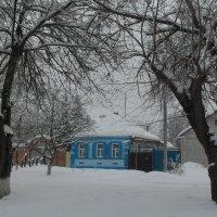 И вновь зима... :: Ольга Башарова