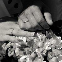 Моя свадьба)) :: Аทลﮎłล ﮎÌА