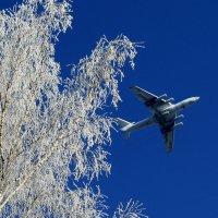 Берез крылом касаясь, взлетал....... :: Надежда Баликова