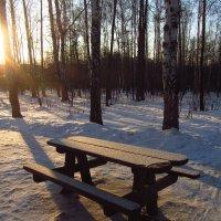 IMG_0905 - Сегодня морозно, но снега мало :: Андрей Лукьянов