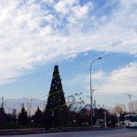 Новогодняя ёлка. :: Felix Tyunibekyan