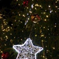 Рождественская звезда :: Лариса Корженевская