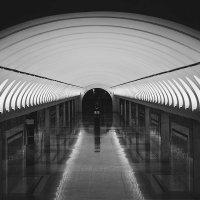 метро :: Марина Зяблова