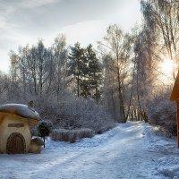 Зимнее утро :: Дмитрий Дубравин