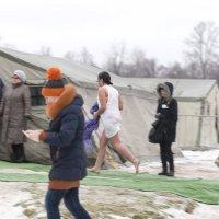 И совсем не холодно... :: Ольга Рощектаева