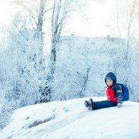 зимнее :: Инга Твердова (Вашкунайте)