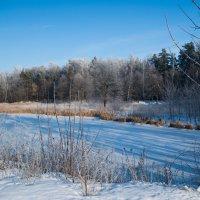 Замерзшее озеро :: Диана Попова