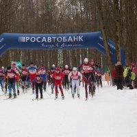 Лыжный марафон :: Евгений Мергалиев