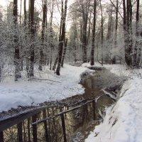 IMG_0988 - В Москве морозно, но не холодно :: Андрей Лукьянов