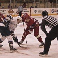 Трус не играет в хоккей :: Владимир Максимов