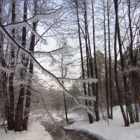 IMG_1001 - В Москве морозно, но не холодно :: Андрей Лукьянов