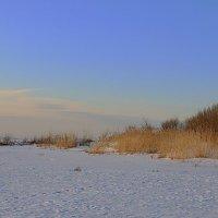Замёрзший берег :: Михаил Лобов (drakonmick)