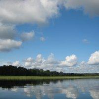 Облака плывут... :: Елена