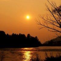 Золотистый закат :: Кристина Воробьева